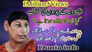 shah dola ke choohay ┃complete information in urdu