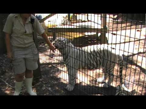 ZooWorld in Panama City Beach, Florida