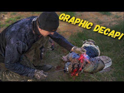 Texas Turkey Decap 2018  Bowmar Bowhunting  