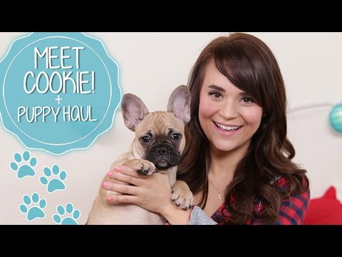 MEET COOKIE! + PUPPY HAUL