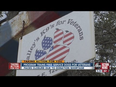 'K-9s For Veterans' gives free ADA-certified dogs, but donations are too low to continue