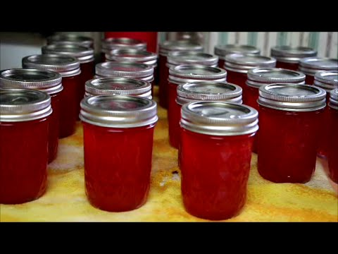 Canning Watermelon Jelly