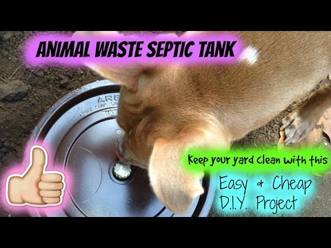 DIY Dog Septic Tank