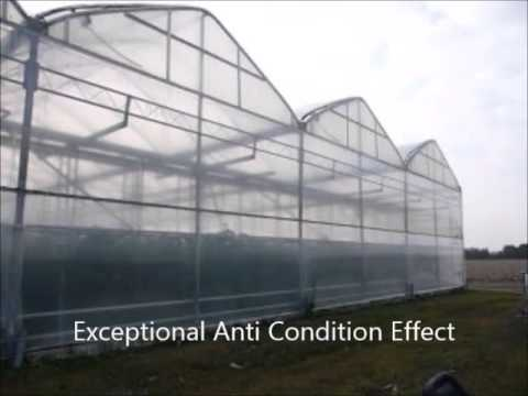 8mils Crystal Clear Vinyl Greenhouse Plastic