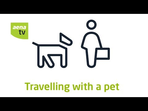 Aena | Tips for travelling with pets