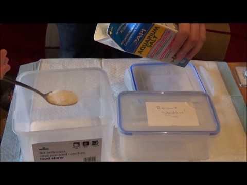 How To Salt Dip Your Betta Fish.