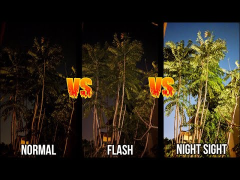 Night Sight vs Flash vs Normal | Google Pixel 3  (45 Photo Comparisons)