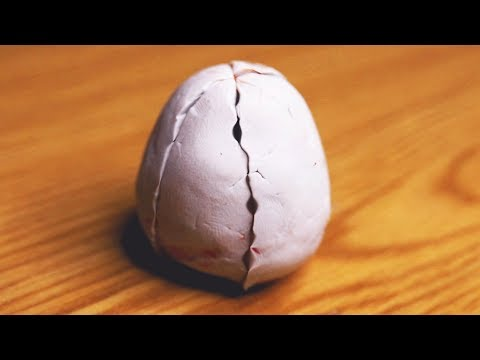 How to make egg?
