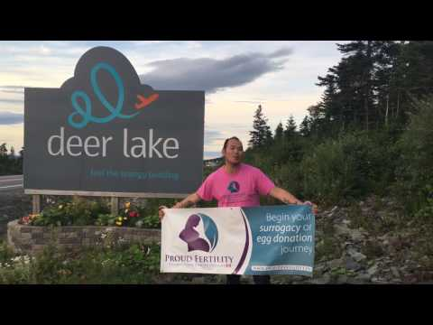 Proud Fertility in Deer Lake Newfoundland - Egg Donation and Surrogacy in Canada