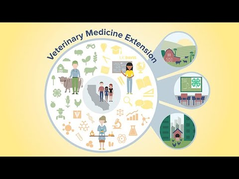 UC Davis Veterinary Medicine Extension