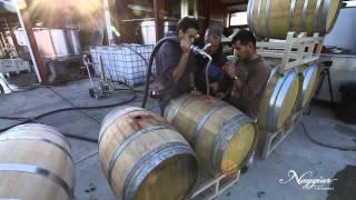 Vine to Wine, Winemaking at Naggiar Vineyards