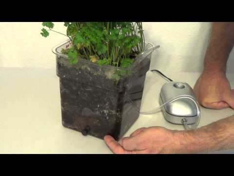 Air Injection technology is the best way to grow in soil, with the speed of hydroponics.