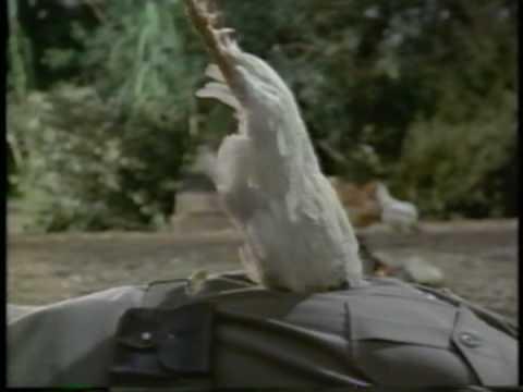 Hot Shots Part Deux Commercial 1993