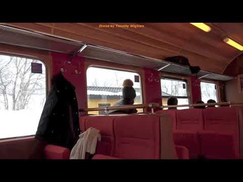Mountain Train Rides - Flåm Line in Norway 2018
