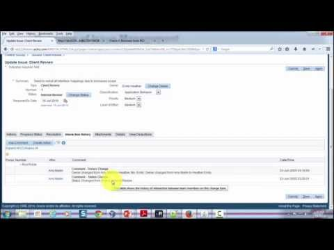 Overview of Issue Management in Oracle Project Management (on Oracle EBS R12.2.4)