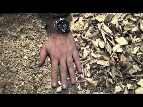 Woodchips to sawdust and wood pellets