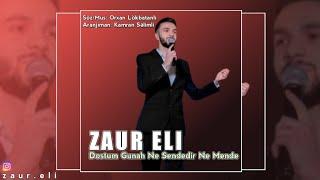 Zaur Eli - Dostum Gunah Ne Sendedir Ne Mende 2020 (Official Music)