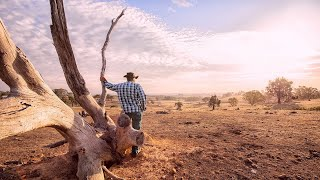 States are 'deafeningly quiet on drought' amidst 'focus on bushfires'
