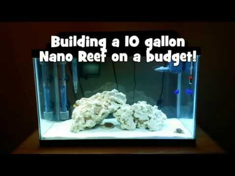 Building a 10 gallon Nano Reef on a budget!