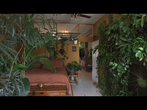 500 Plants in one NYC apartment | Neighbors