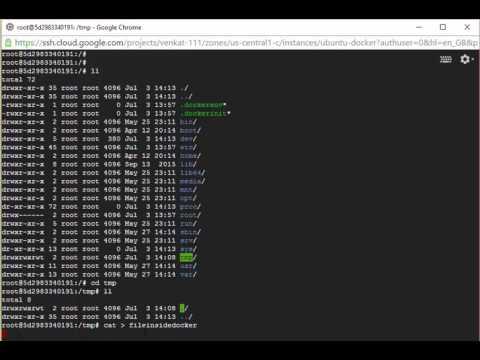 Get files created inside docker image to host
