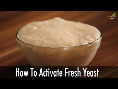 How to activate Fresh Yeast | Sanjeev Kapoor Khazana