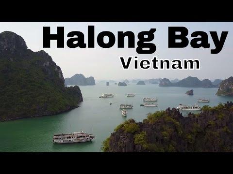Cruising Halong Bay | Asia Vlog days 10/11