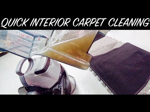 Auto Detail Interior Carpet Cleaning | Auto Fanatic