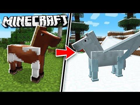 Transform a HORSE into a UNICORN in Minecraft!