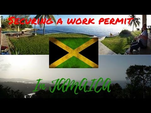 How to Secure a Work Permit in Jamaica  | TravelrHelp #7