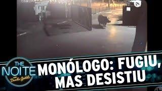 Monólogo: Hipopótamo foge, mas desisti ao encontrar o mundo real | The Noite (14/11/17)
