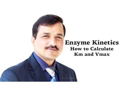 Enzyme Kinetics Part 2- How to Calculate Km and Vmax
