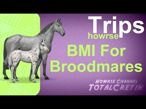 BMI For Broodmares - Howrse Trips