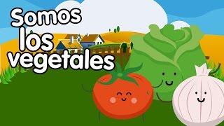 Canción de los vegetales - Canciones Infantiles - Songs for Kids in spanish