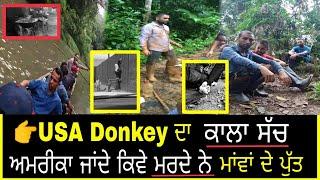 USA||ਅਮਰੀਕਾ Donkey ਦਾ ਅਸਲ ਸੱਚ ਕੀ ਹੈ 👉ਮਾਫੀਆਂ ਤੋਂ ਕਿਉ ਡਰਦੇ ਨੇ ਪੰਜਾਬੀ😢2019