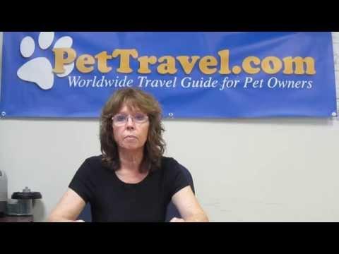 UK Pet Import Instructions