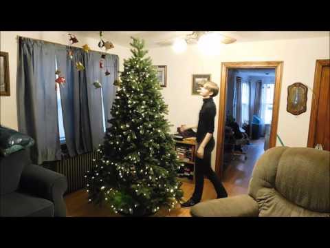 I Set Up a Christmas Tree