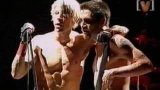 RHCP (Big Day Out)  Scar Tissue + crazy crowd (2000)