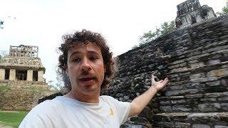 Google quiere recrear estas pirámides antiguas usando robots | Palenque, Chiapas