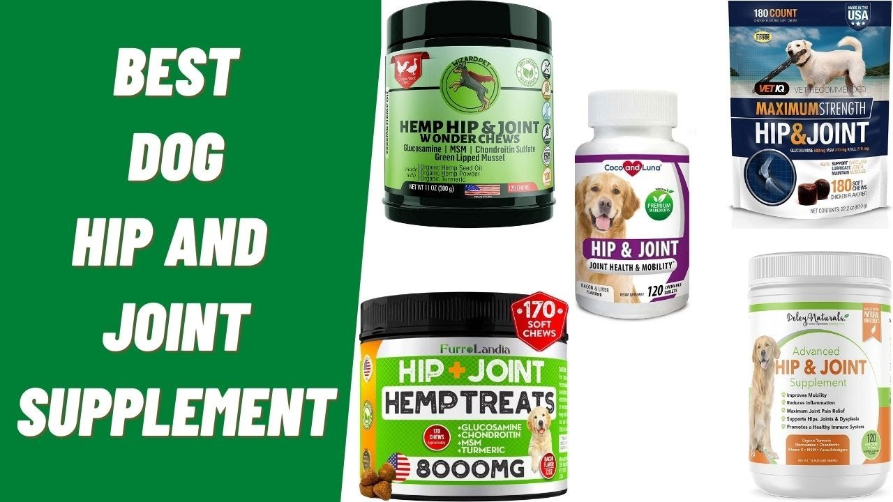 Best Dog Joint Supplement - Natural Hip and Joint Supplement for Dogs