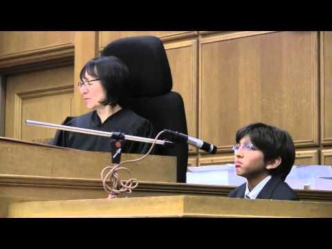 Mock Trial - Witness