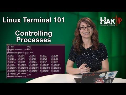 HakTip - Linux Terminal 101: Controlling Processes