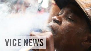 Jamaican Bud Business : Meet Medicanja