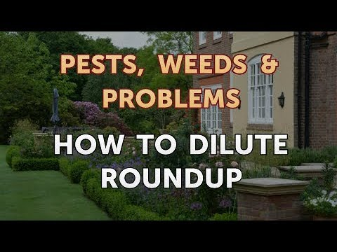 How to Dilute Roundup