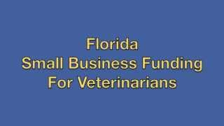 Florida Small Business Funding For Veterinarians 5000 250000 Fast Fun