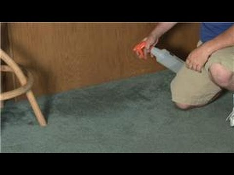 Carpet Cleaning : How to Take the Smell Out of Wet Carpet