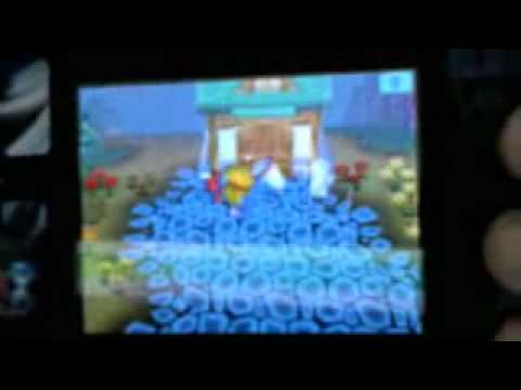 Animal Crossing Wild World  My Massive Garden and my House