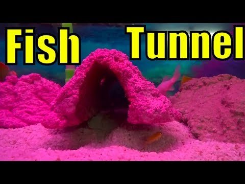676# Diy Fish Tank Decor | How to Make Aquarium Rocks | Kamal Ka Idea