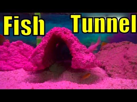 676# Diy Fish Tank Decor | How to Make Aquarium Rocks | Kamal Ka Idea