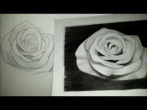 Pencil drawing tips and techniques for beginners!!!